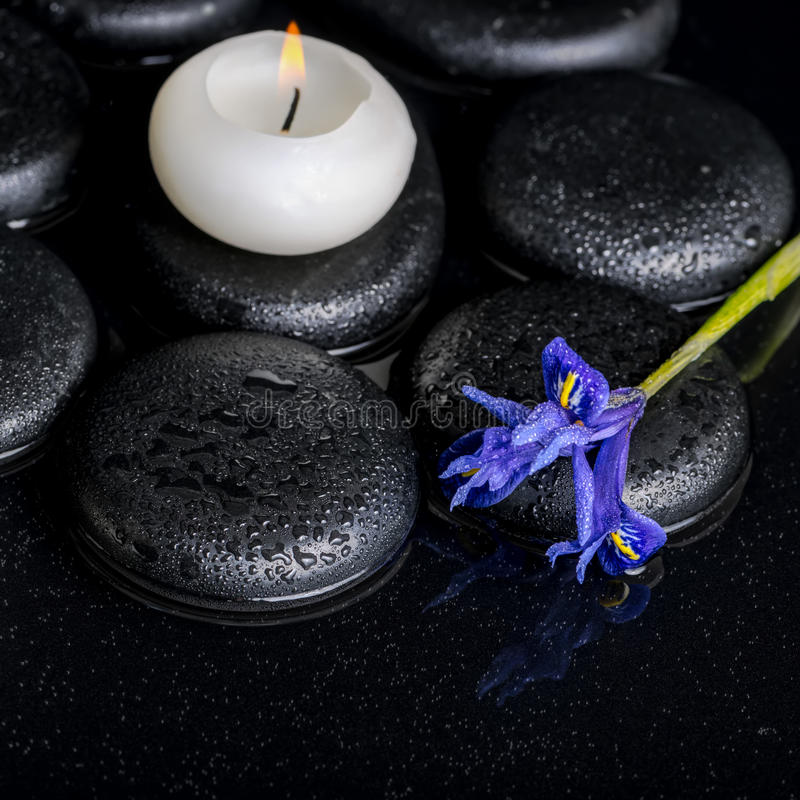 Beautiful spa concept of blooming iris flower, candle and black. Zen stones on water, closeup royalty free stock images