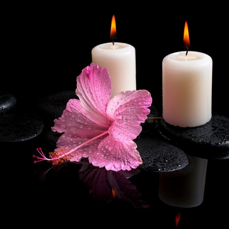 Beautiful spa stilleven van gevoelige roze hibiscus, kaarsen stock afbeeldingen