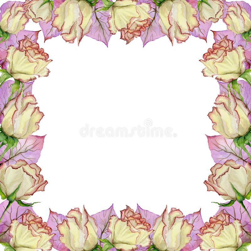 Beautiful spring border made of rose flowers and leaves with veins. Square frame with white background for a text. Watercolor painting. Hand painted floral vector illustration