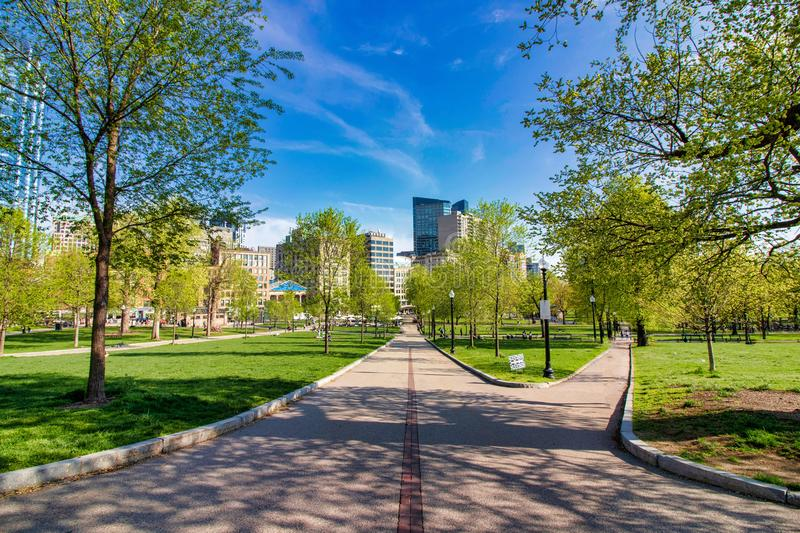 Beautiful spring day at Boston Common Park Massachusetts. Nice view at sunny day with blue sky royalty free stock photo
