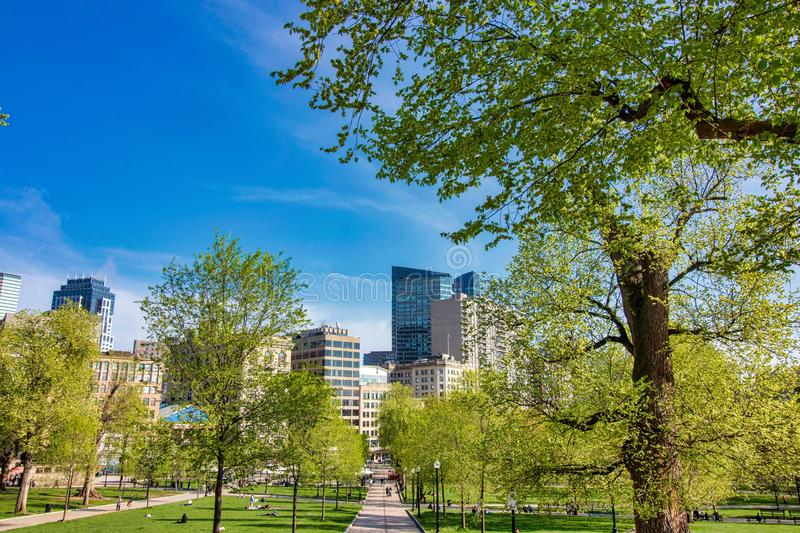 Beautiful spring day at Boston Common Park Massachusetts. Nice view at sunny day with blue sky stock images