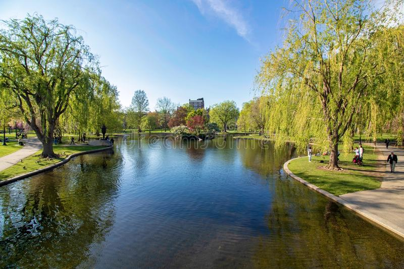 Beautiful spring day at Boston Common Park Massachusetts. Nice view at sunny day with blue sky and water stock image