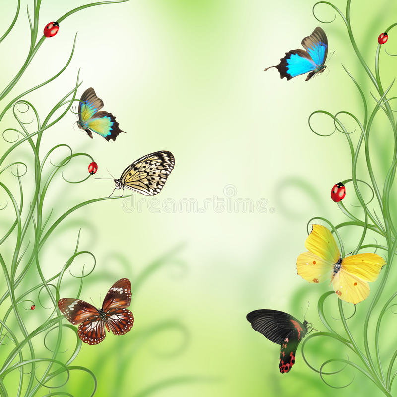 Beautiful spring design royalty free illustration