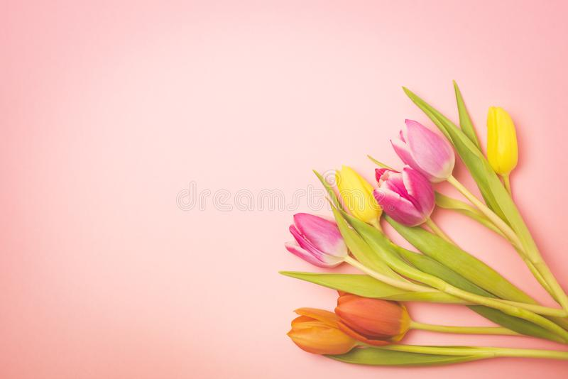 Beautiful Spring Flowers Background Bunch of Tulip Flowers Background Top View Copy Space Toned stock photos