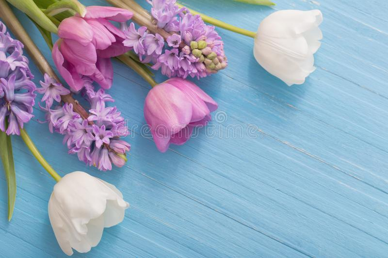Beautiful spring flowers on blue wooden background stock images