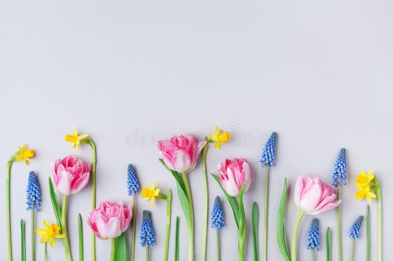 Beautiful spring flowers on pastel table top view. Greeting card for International Women Day. Flat lay. Style royalty free stock photo