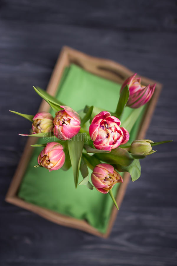 Beautiful spring flowers tulips on a dark background. Top View royalty free stock photos