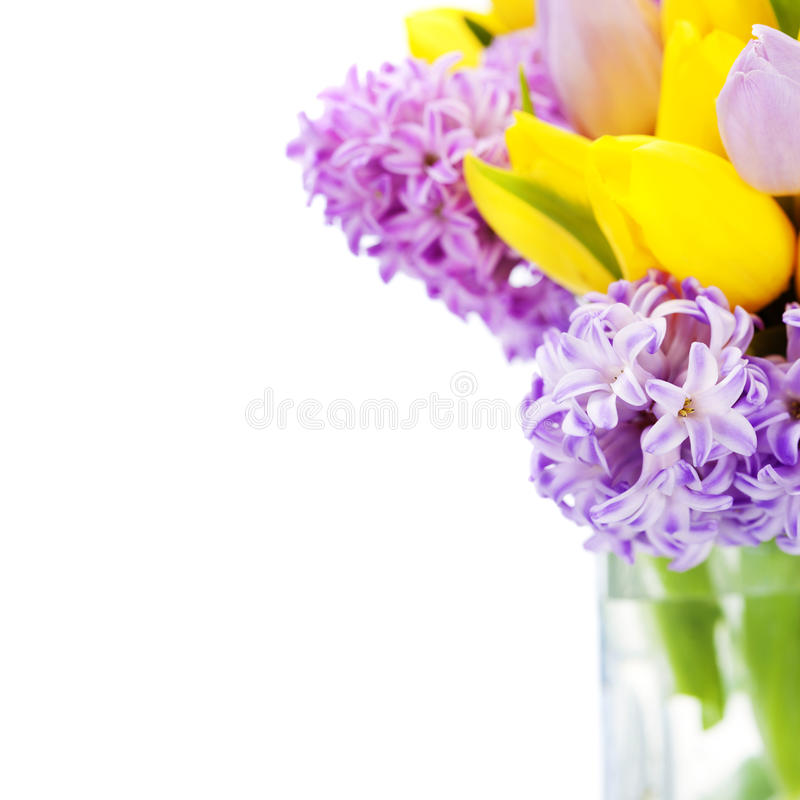 Beautiful spring flowers. In vase over white stock image