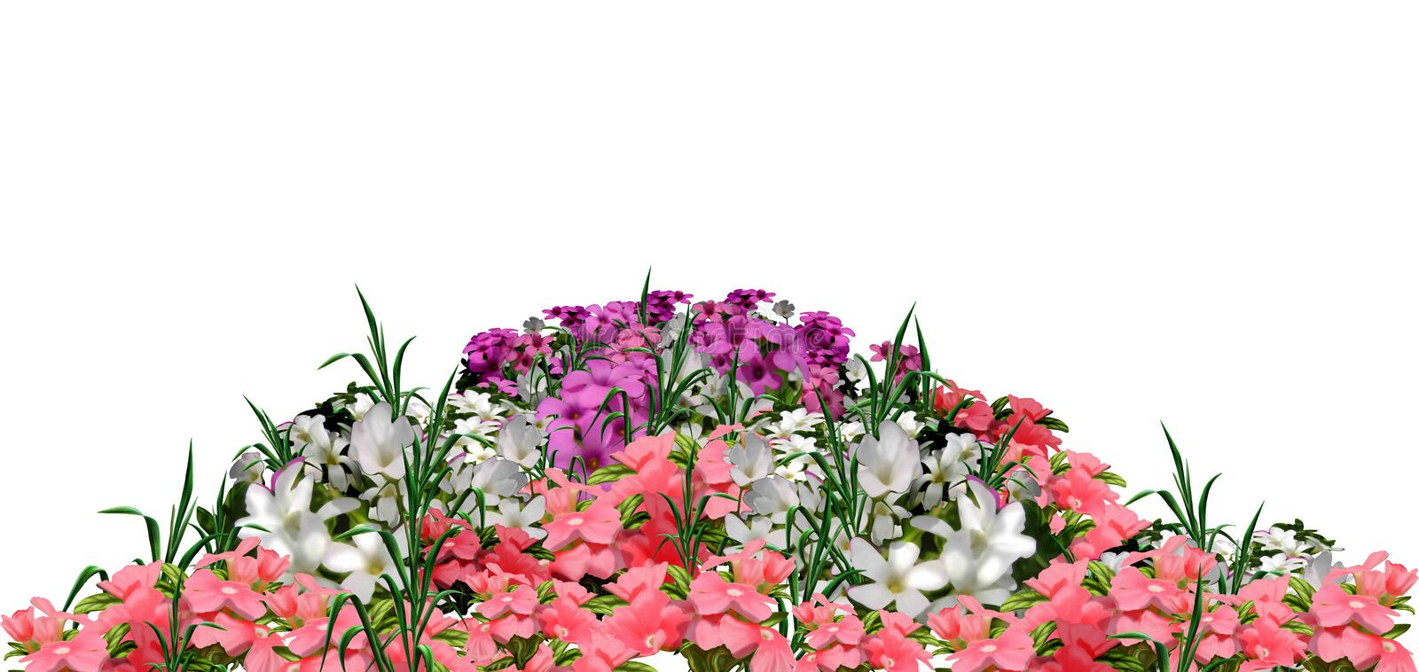 Beautiful spring flowers vector illustration