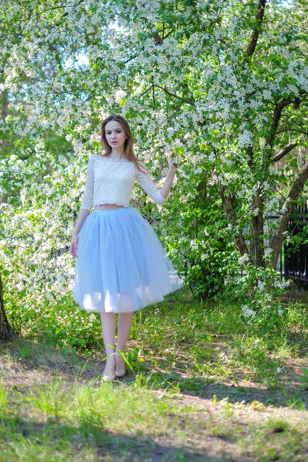 Beautiful spring girl in blooming tree. Beautiful spring girl in tree royalty free stock images