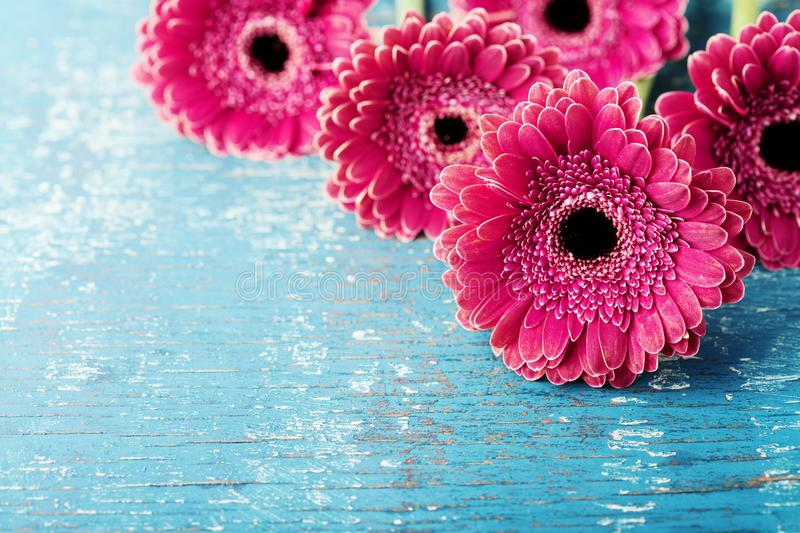 Beautiful spring greeting card for Mother or Womans day with fresh gerbera daisy flowers on vintage turquoise background. Beautiful spring greeting card for stock photos
