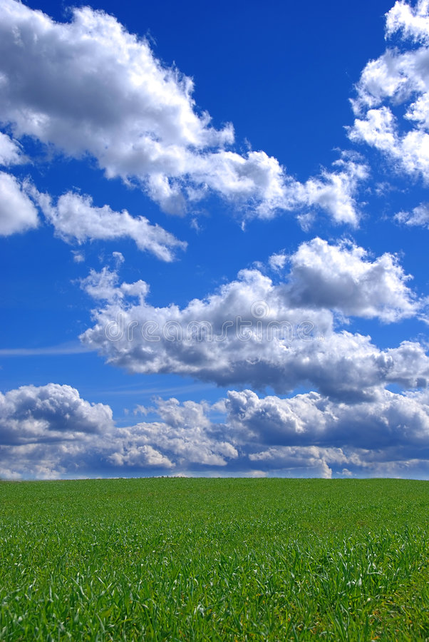 Beautiful spring landscape royalty free stock image