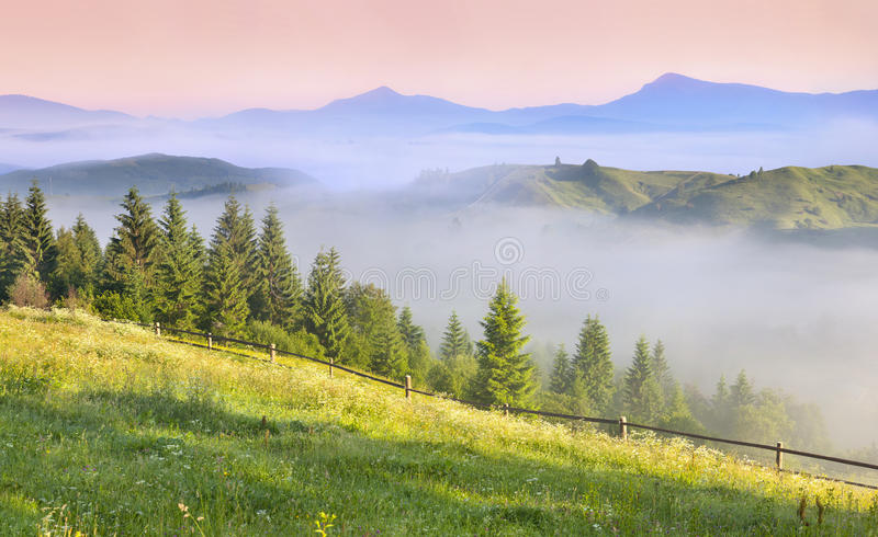 Beautiful spring landscape. In the mountains royalty free stock photos