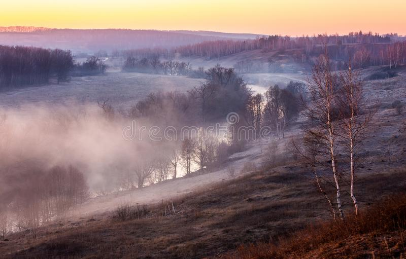 Beautiful spring landscape with fog lit with a rising sun royalty free stock photos