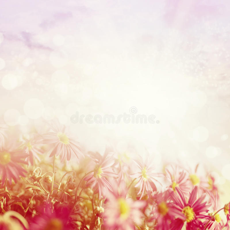 Beautiful spring meadow royalty free illustration