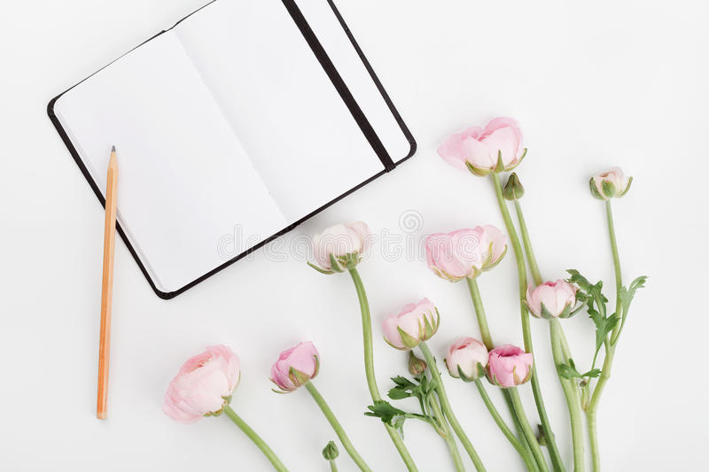 Beautiful spring Ranunculus flowers and empty notebook on white table from above. Mockup. Pastel color. Clean space for text. Flat lay style stock image