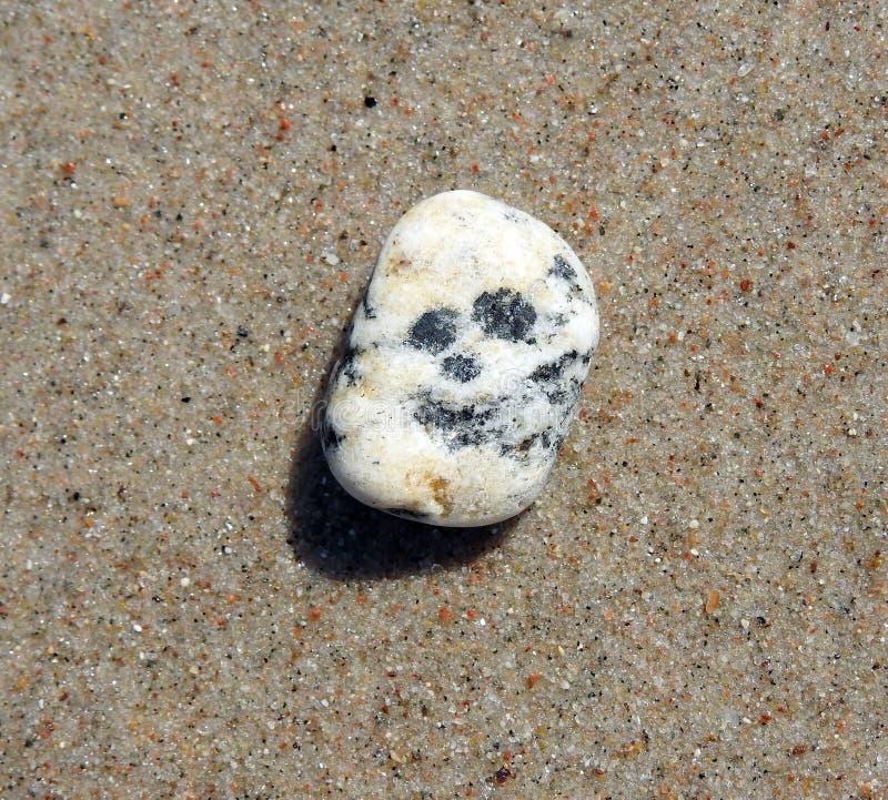 Beautiful stone on sand on Baltic sea coast, Lithuania stock photo