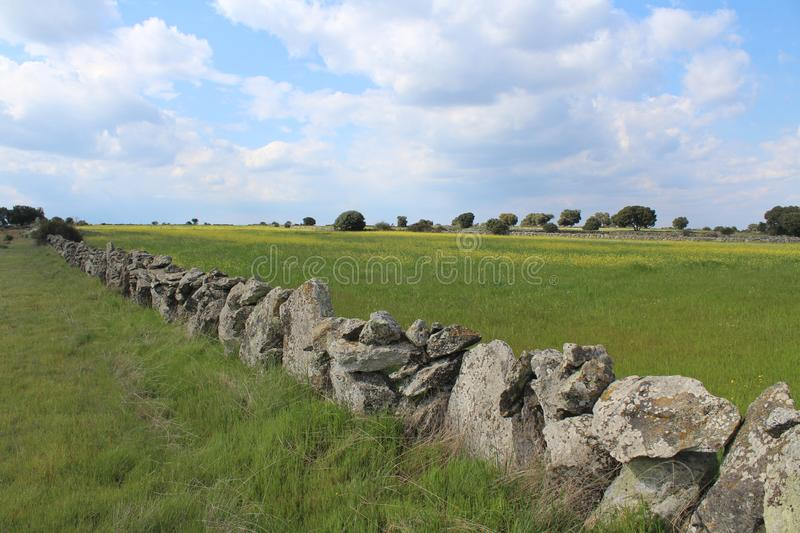 Beautiful stone wall that separates the fields and animals royalty free stock photos