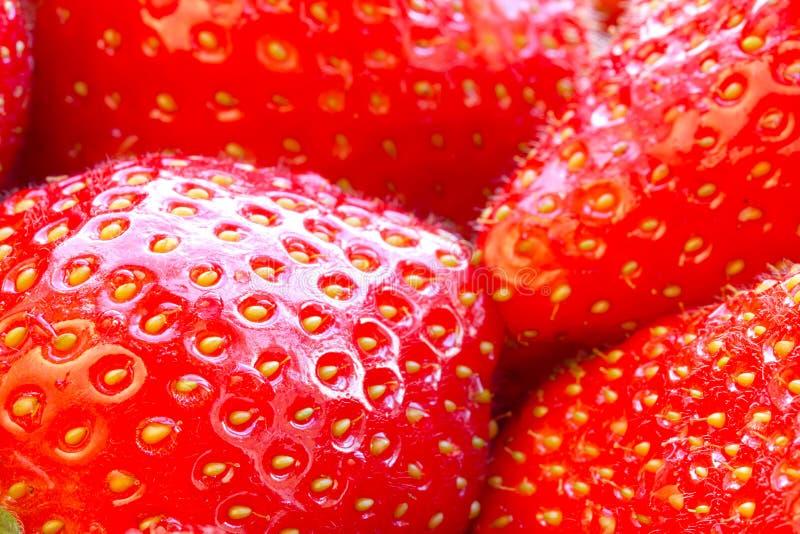 Download Beautiful Strawberries Close Up Stock Photo - Image: 25046078