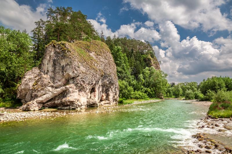 Beautiful stream Bialka in the pieniny mountains in summer. Europe stock image