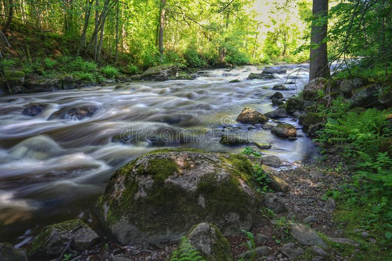 Beautiful  streaming river and big rocks scene. Beautiful  streaming river and  growing in riverbank scene. beautiful  streaming river and waterfall and rocks royalty free stock photography