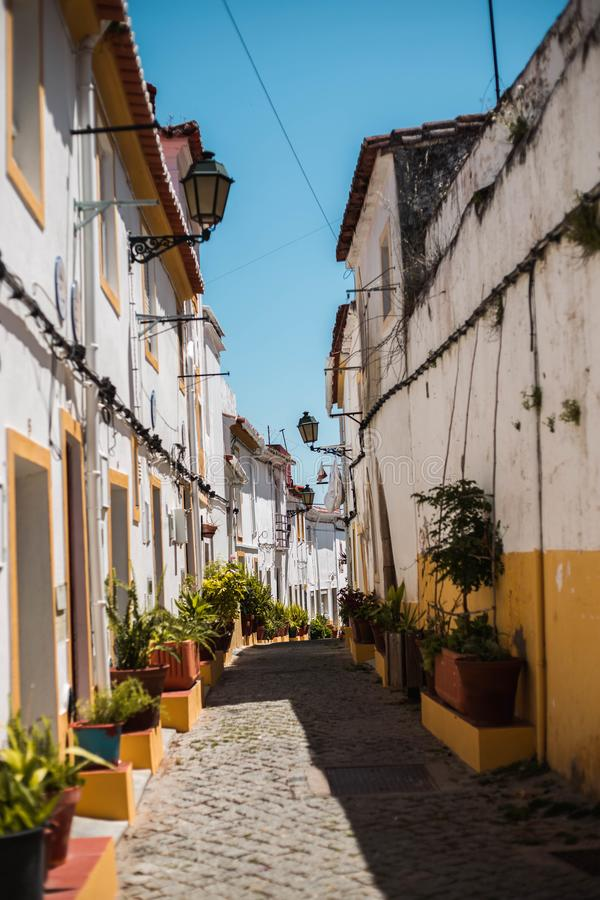 Beautiful street with flower pots plants and flowers in Elvas Portugal royalty free stock photos