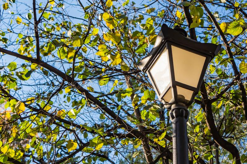 A beautiful street lighting lantern is among the trees with green and yellow leaves on the blue sky background in the park in autu stock image