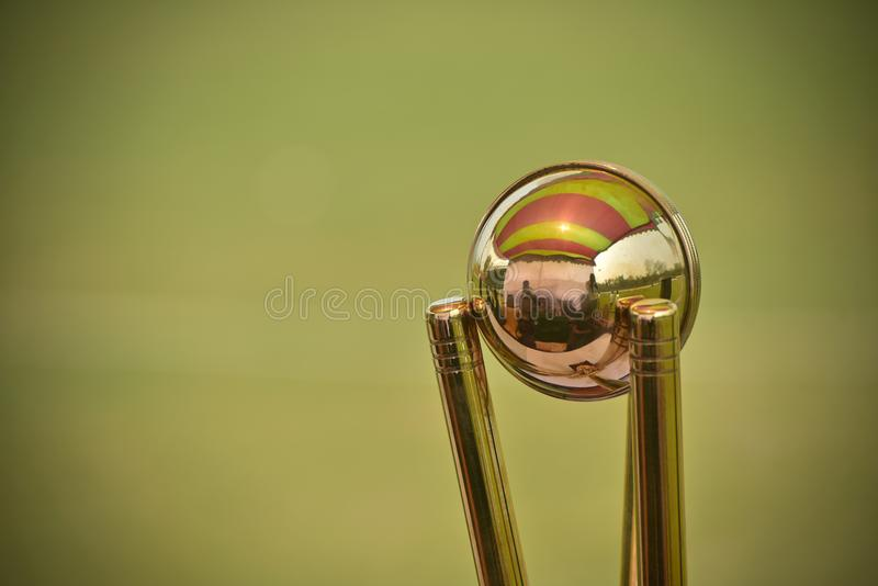 Gorgeous cricket crests isolated stock photograph. A beautiful and stylish cricket tournament crests isolated object stock photograph stock photography