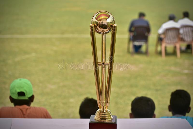 Gorgeous cricket crests isolated stock photograph. A beautiful and stylish cricket tournament crests isolated object stock photograph stock images
