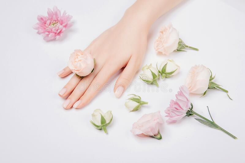 Beautiful stylish trendy female pink manicure with flower on background, top view. Concept beauty stock photos