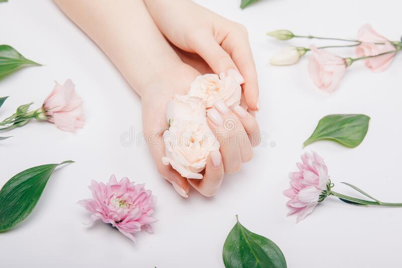 Beautiful stylish trendy female pink manicure with flower on background, top view. Concept bio nature cosmetics skin royalty free stock images