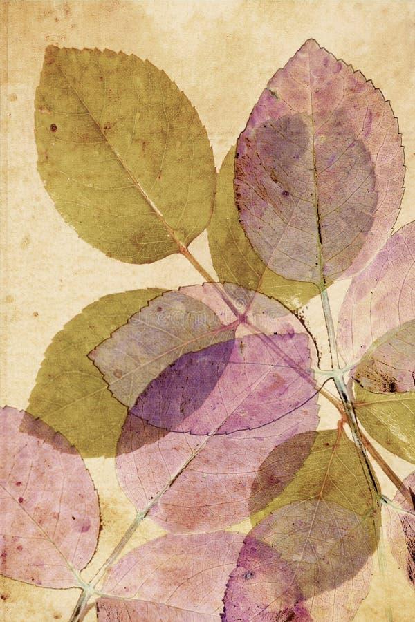 Download Beautiful, Subtle  Vintage Background Stock Illustration - Image: 26241088