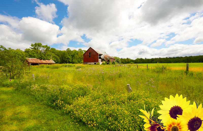 Download Country landscape. stock photo. Image of barn, crop, clouds - 30204636