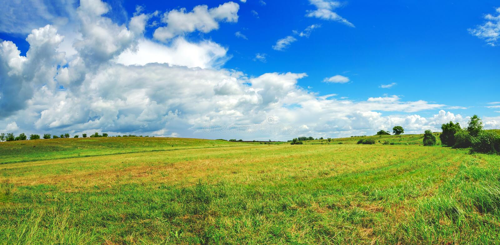 Sunny summer panorama of wide green meadow and beautiful clouds in blue sky stock images