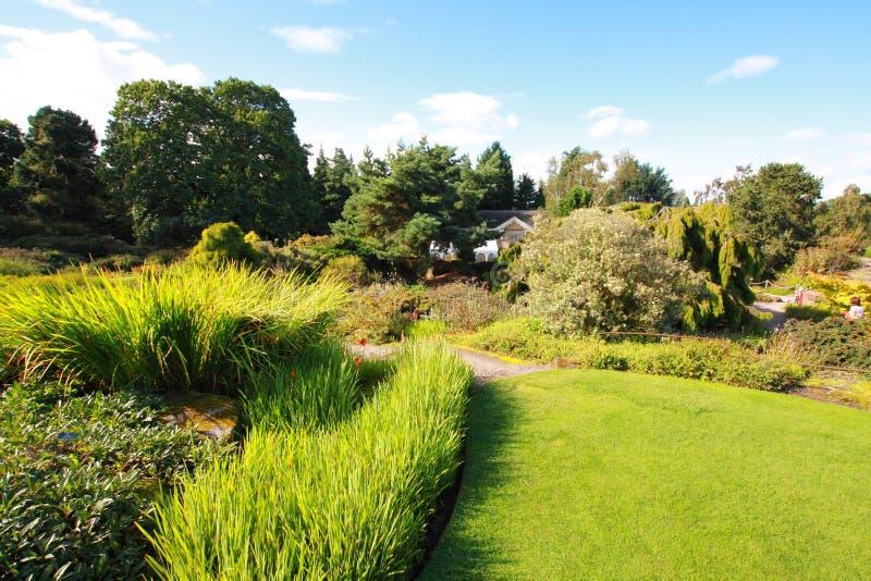 Beautiful summer garden. A beautiful summer garden, Europe royalty free stock photos