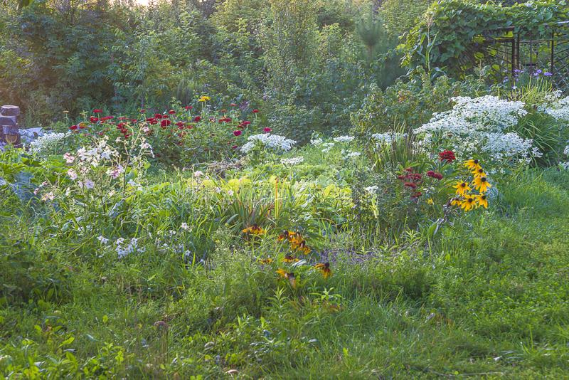 Beautiful summer garden landscape with various of flowers royalty free stock photography