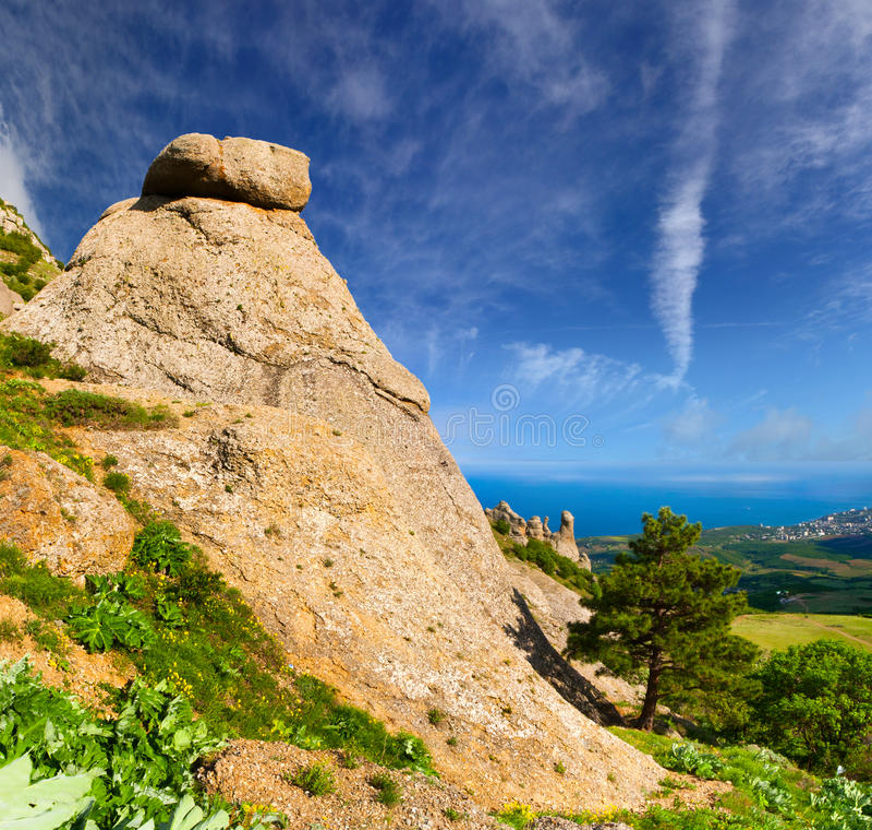 Beautiful Summer Landscape Stock Photography