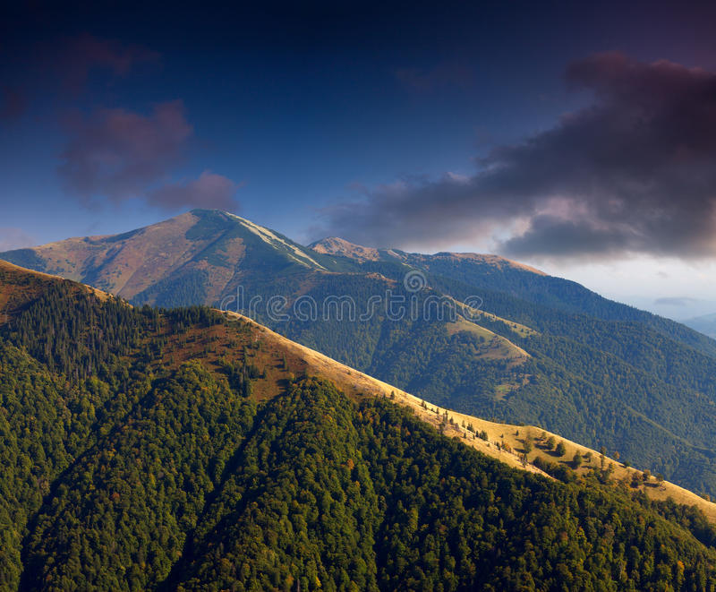 Download Beautiful summer landscape stock image. Image of mountain - 22823523