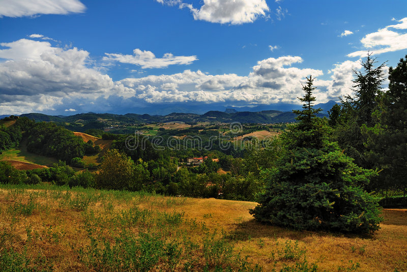 Download Beautiful summer landscape stock photo. Image of peace - 6540766