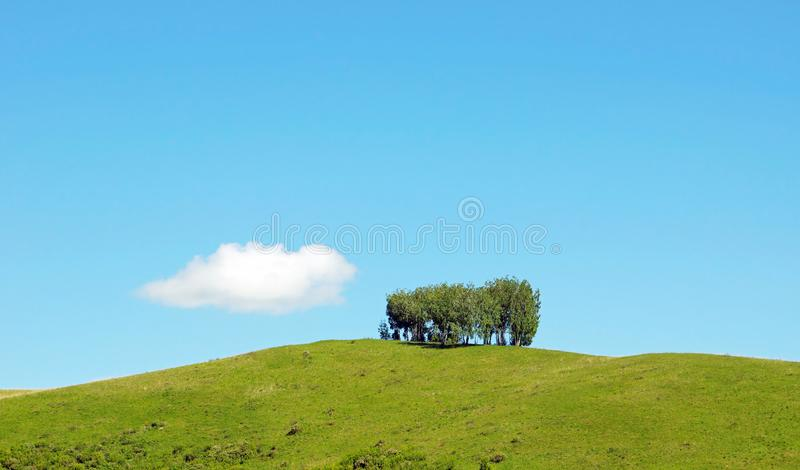 Beautiful summer landscape with a few trees on the top of a hill and a lonely white cloud. Against a blue sky royalty free stock images