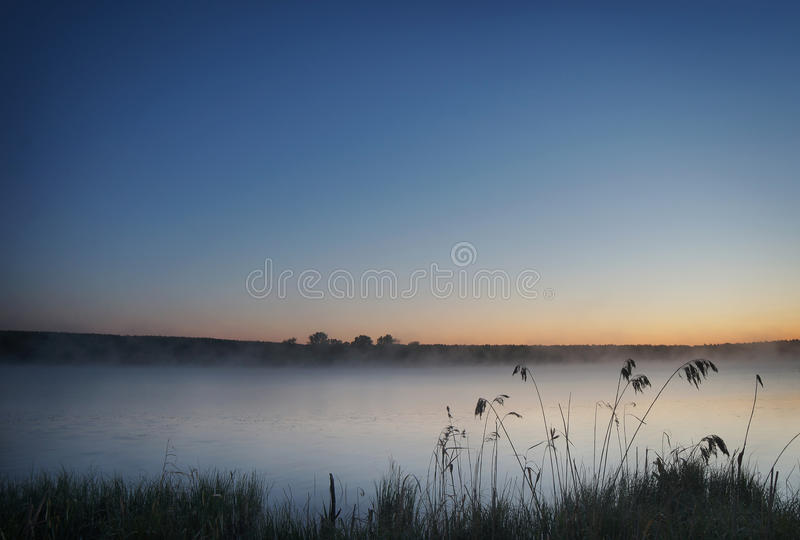 Beautiful summer landscape in foggy morning at the pond royalty free stock photo