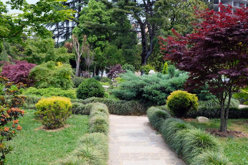 Beautiful summer landscape in the garden. Landscape design, beautiful design of the park area stock images