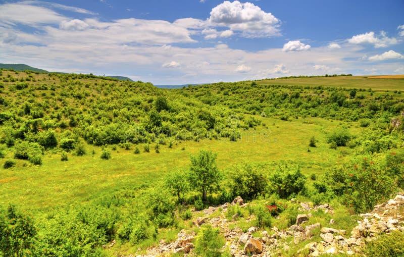 Beautiful landscape in mountain range. Beautiful summer landscape in mountain range royalty free stock image