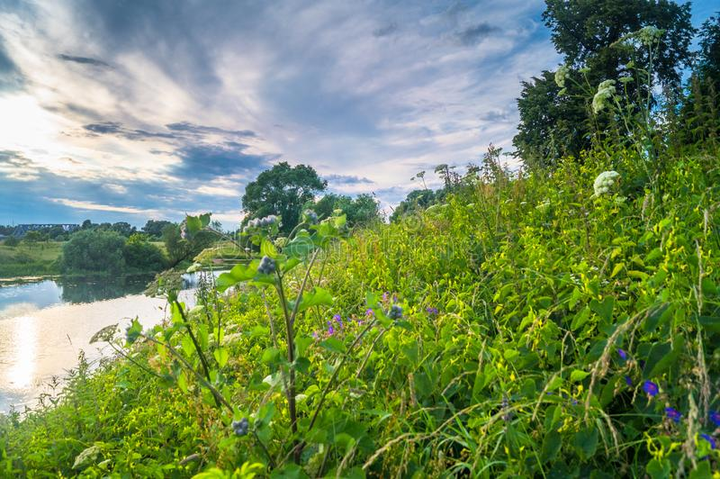 Beautiful summer landscape.Nerl river,illuminated by the setting evening sun. Evening serenity royalty free stock image