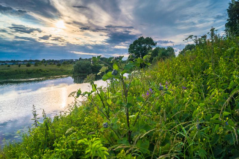 Beautiful summer landscape.Nerl river,illuminated by the setting evening sun. Evening serenity stock photos