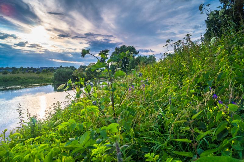Beautiful summer landscape.Nerl river,illuminated by the setting evening sun. Evening serenity royalty free stock photo