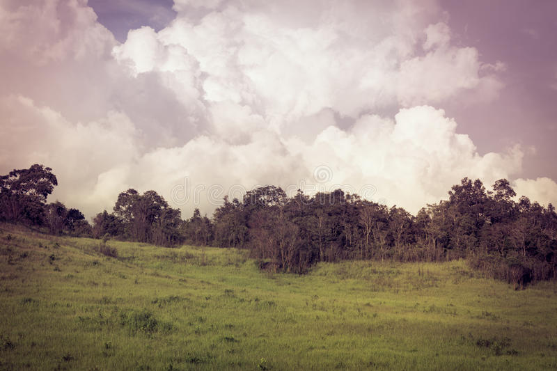 Beautiful summer mountain landscape. Retro filtered. Cross process style. Beautiful summer mountain landscape. Sky and clouds, idyllic rural view of pretty royalty free stock images
