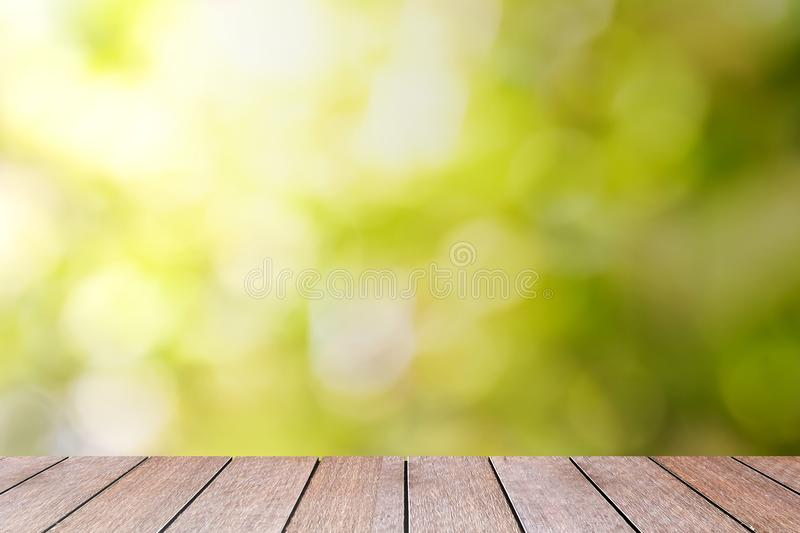 Beautiful Summer Nature Outdoor With Green Bokeh Background Stock