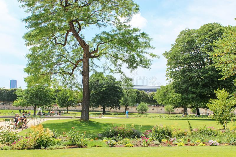 Beautiful summer park in Paris France royalty free stock photos