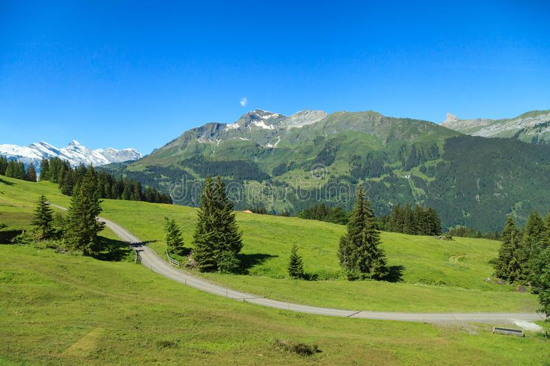 Beautiful summer view of mountain. Outdoor natural scene in Swiss Alps, Switzerland, Europe. royalty free stock image